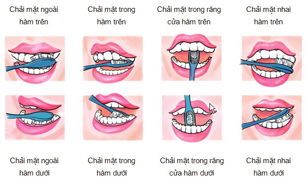 Chuyên gia nha khoa tư vấn: Đánh răng lúc nào tốt nhất? 2