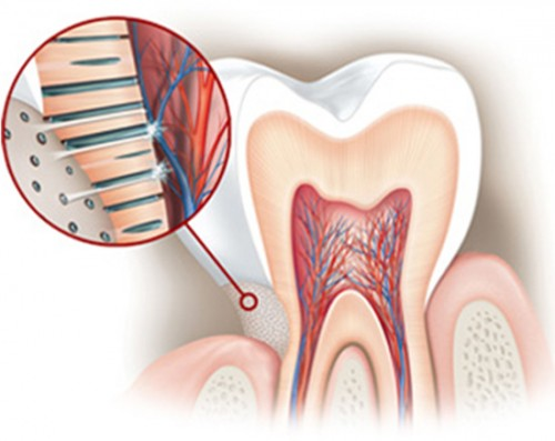 Răng bị ê buốt phải làm sao chữa khỏi trong 1 ngày 11