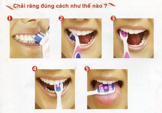 Phương pháp chải răng đúng cách như thế nào? [Chuyên gia tư vấn] 2