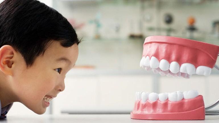 Bệnh nghiến răng ở trẻ em & những HỆ LỤY cho sức khỏe răng miệng 1