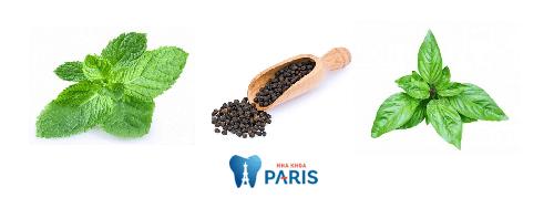 Cẩm nang các loại thuốc chữa sâu răng cho hiệu quả bất ngờ 4