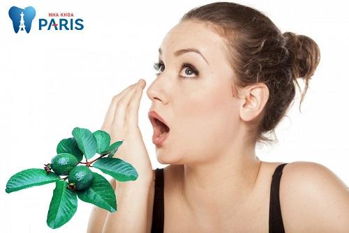 Trị hôi miệng bằng lá ổi có hiệu quả không?